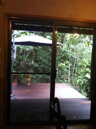 Crater Lakes Rainforest Cottages: patio