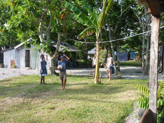 Jabsina Guest House: Aussies v NiVans in volleyball