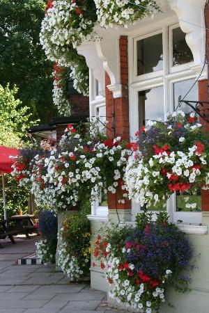 The Swan Inn & Lodge: front