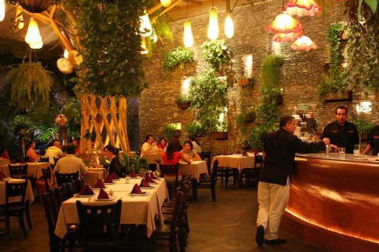 Ofelia S Italian Restaurant