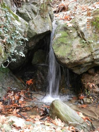 Mount Pelion - near Zagora Village - Picture of Mount ...