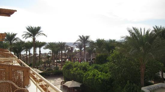 Oonas Dive Club Hotel: View of Naama bay from room.