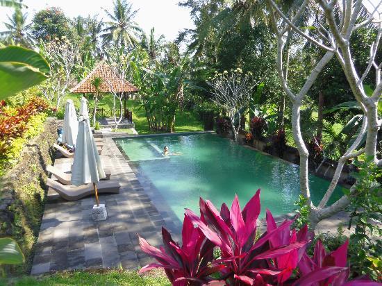 Puri Taman Sari : Agréable piscine