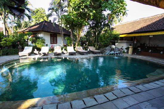 Prima Cottage: swimming pool