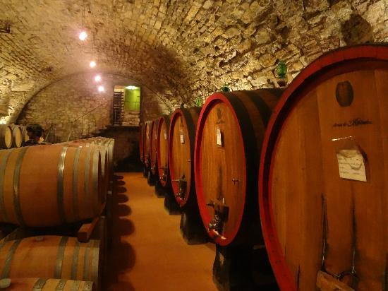 Tuscan Wine Tours with Angie: barrels