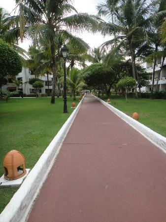 Barcelo Occidental Punta Cana: Beautiful Boardwalks run throughout the Resort
