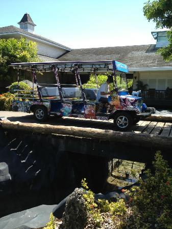 Plantation Bay Resort And Spa: colourful jeepney