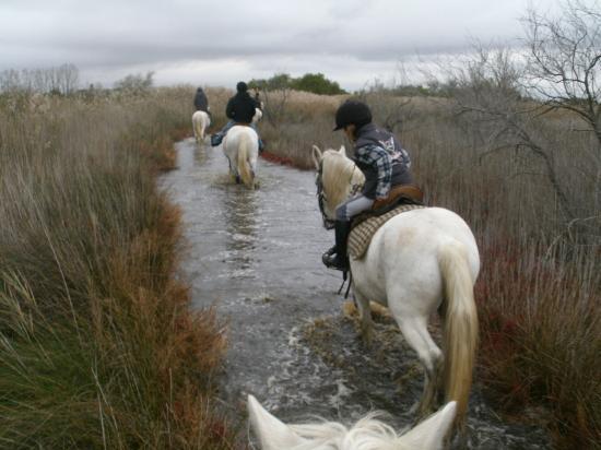 Promenade à cheval, Chez Elise