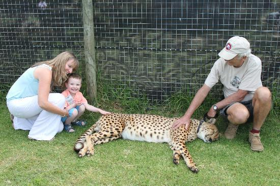 Provided by: Cheetah Outreach