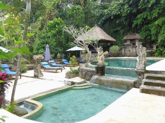 piscine picture of alam indah ubud tripadvisor. Black Bedroom Furniture Sets. Home Design Ideas