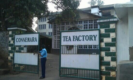 ‪Connemara Tea Factory‬