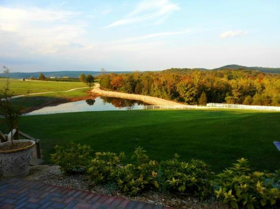 Chaumette Vineyards & Winery: View from Wedding Venue