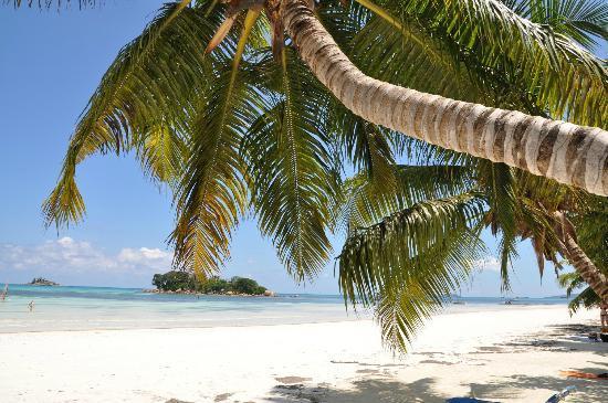 Le Duc de Praslin: beach