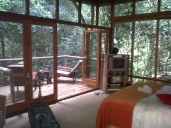 Trogon House and Forest Spa: view of the room
