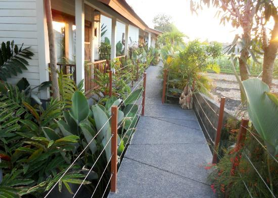 The Studio Bali: Walk way to Bungalows