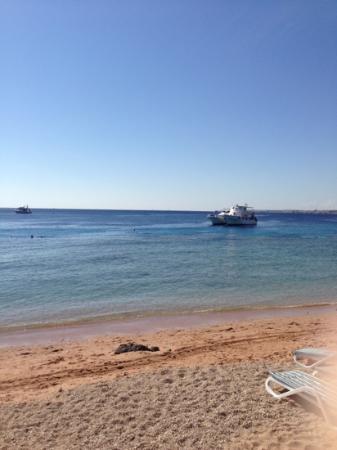 Continental Garden Reef Resort: пляж