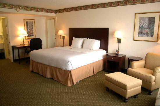Holiday Inn Express & Suites Lakeland South: King Suite
