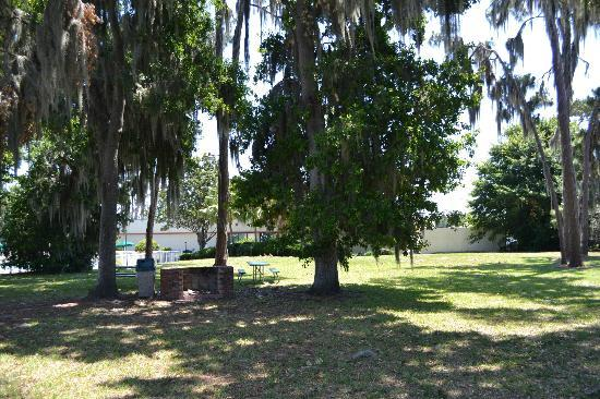 Holiday Inn Express & Suites Lakeland South: Picnic Area