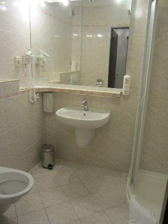 BEST WESTERN PLUS Hotel Meteor Plaza: Bathroom glimpse
