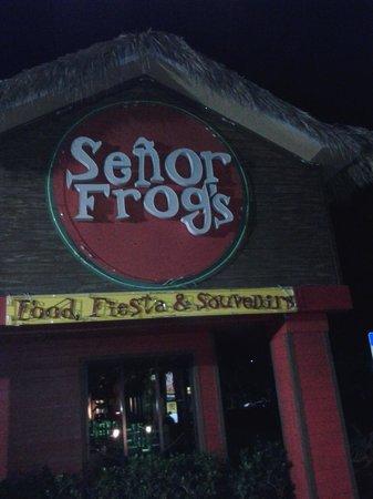 Señor Frog's: Doorway entrance