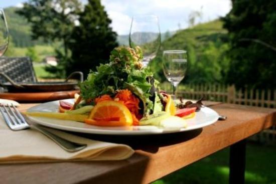 Rainhof Scheune: unsere Terrasse mit Schwarzwaldblick