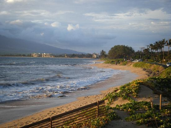 Maui Sunseeker LGBT Resort: Had several wonderful walks on the beach across from Sunseeker