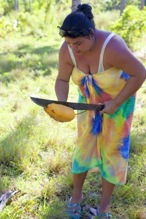 Parque Monumento Nacional Bariay: Bariay Park coconuts.