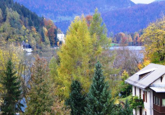 Hotel Jelovica Bled: vista del lago dalla camera