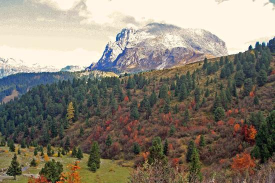 Residence Mayr: A day hike nearby