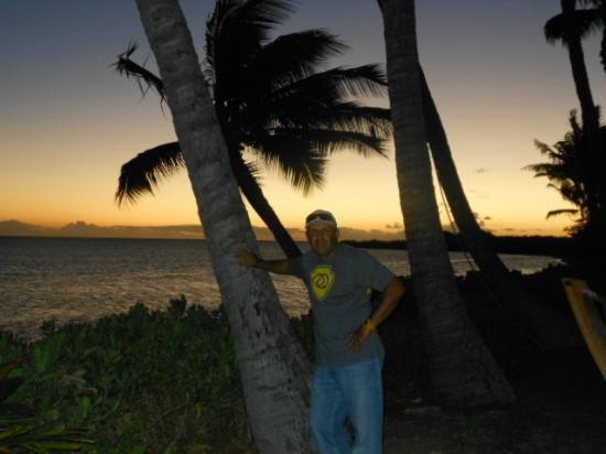 Hotel Molokai: palm tree right outside my room...sun setting
