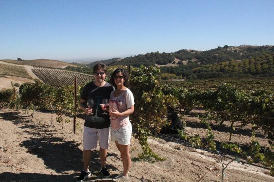 Adelaida Cellars: Picnic in the vineyards