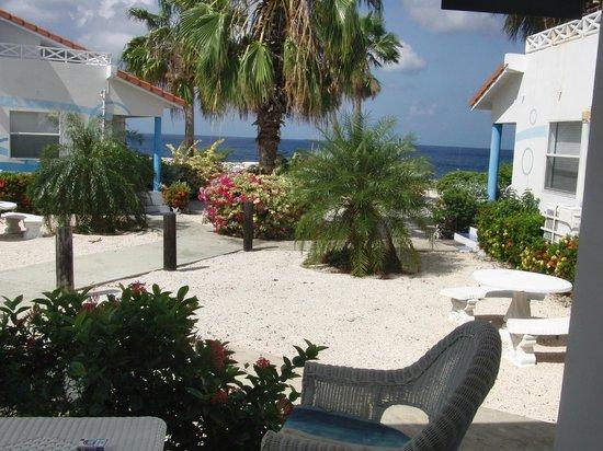 Marazul Dive Resort: Blick von unserer Veranda (EG)