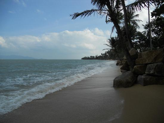 Treehouse Silent Beach: Stranden utanför Bungalow