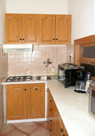 Hotel Apartments Templova: kitchen