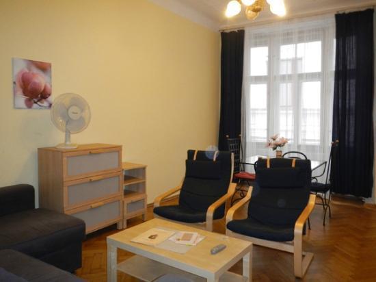 Hotel Apartments Templova: livingroom