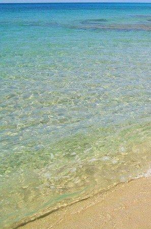 Ayala Beach: la spiaggia con l'acqua cristallina
