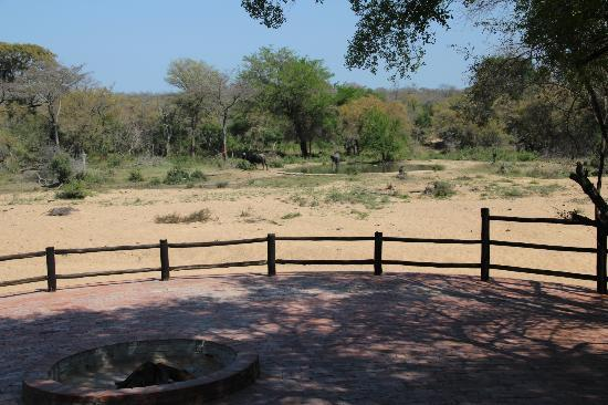 Shumbalala Game Lodge: This was taken from the deck at the main lodge.