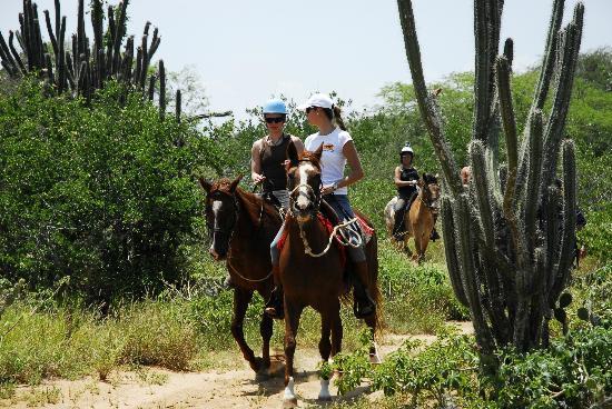 Porlamar, Venezuela: Cabalgando por nuestro hermoso bosque de cactus