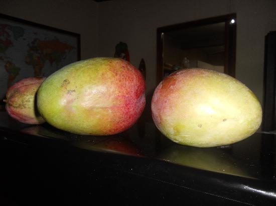 Managua Hills Bed and Breakfast: Fruta fresca
