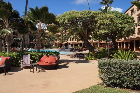 Courtyard Kaua'i at Coconut Beach: Pool area