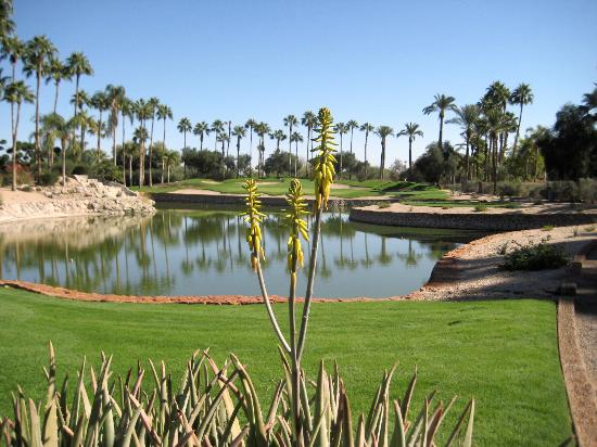 The Phoenician, Scottsdale: Another golf example