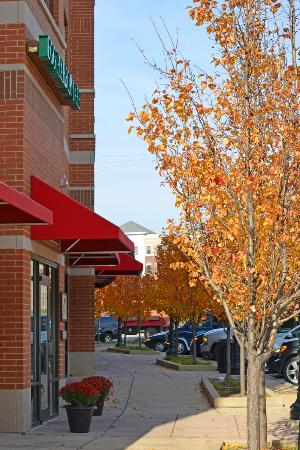 friendly hotels near downers grove