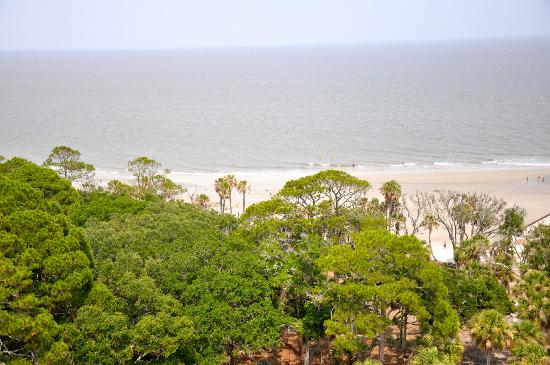 Hunting Island State Park Campground: view from top of lighthouse