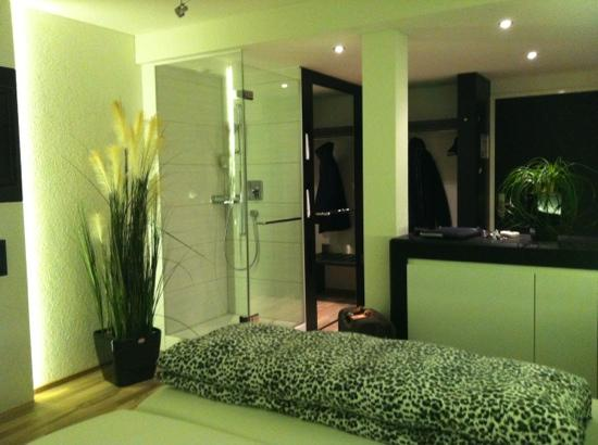 Hotel Restaurant Vogelsang: vue chambre loft
