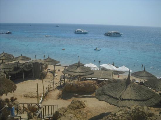 Sharm Holiday Resort Hotel : hadaba