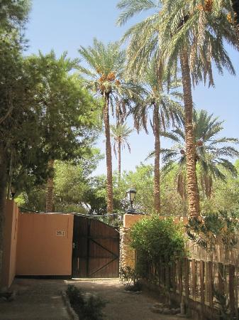Figuig, Morocco: entrée