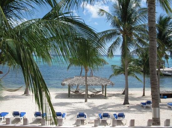 Little Cayman Beach Resort: Ocean front room view