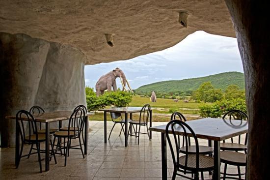 Parque de Baconao: Valle de la Prehistoria, Santiago de Cuba. Cafe.