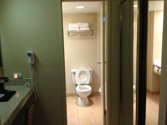BEST WESTERN Lake Buena Vista Resort Hotel: small bathroom