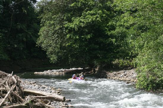 Province of Heredia, Kosta Rika: Rafting Sarapiqui